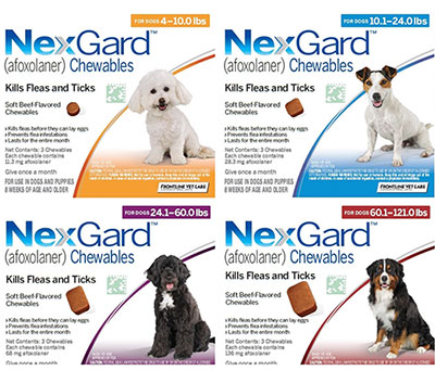 NEXGARD (Guaranteed Best Price)