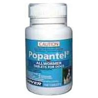 Popantel for Dogs (Guaranteed Best Price)