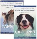 Capstar Flea Tablets Blue Small Dog or Cat 6 pk 2 to 25 lbs