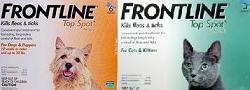 Frontline TopSpot (Known as Frontline Spot On) Dog 45lbs-88lbs Purple 6.00
